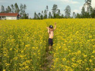 Poika rypsipellolla, kuvaaja Hannu Vuoriniemi