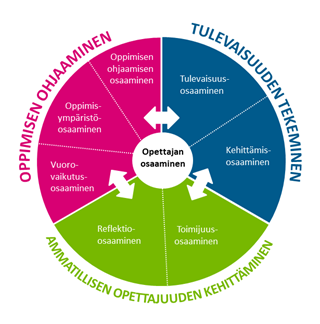 Ammatillisen opettajan osaamisalueisiin sisältyy seuraavat teemat: Oppimisen ohjaaminen, johon sisältyy oppimisen ohjaamisen osaaminen, oppimisympäristöosaaminen ja vuorovaikutusosaaminen; Ammatillisen opettajuuden kehittäminen, johon sisältyy reflektio-osaaminen ja toimijuusosaaminen sekä Tulevaisuuden tekeminen, johon sisältyy tulevaisuusosaaminen ja kehittämisosaaminen.